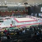 GC_blog_Guimaraes_vai_receber_campeonato_europa_teamgym
